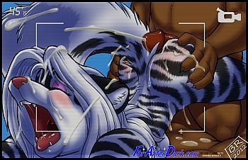 Zig Zag & Tina Lynx - MBR 016 top hentais free